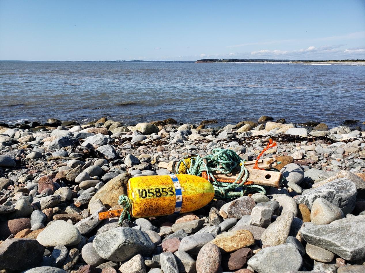 Nova Scotia Beach Cleanup
